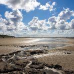 ~~~ on the beach ~~~