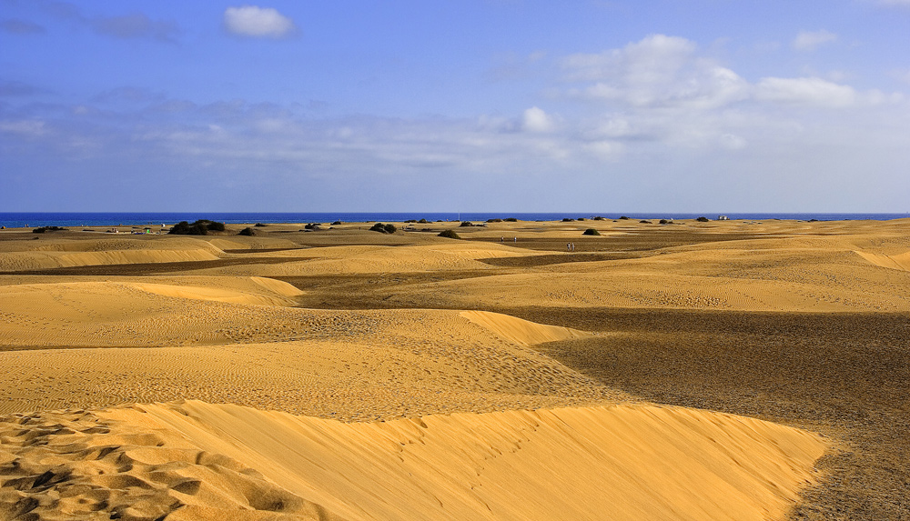 On the dunes...