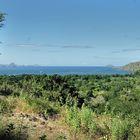 On the island of Komodo