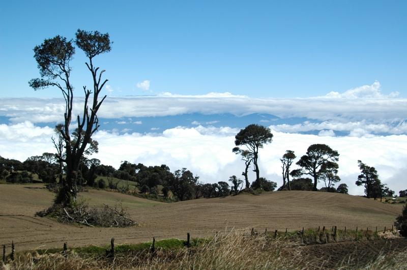 On the way to Irazu volcano