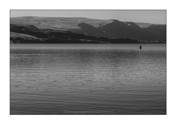 One In Lake