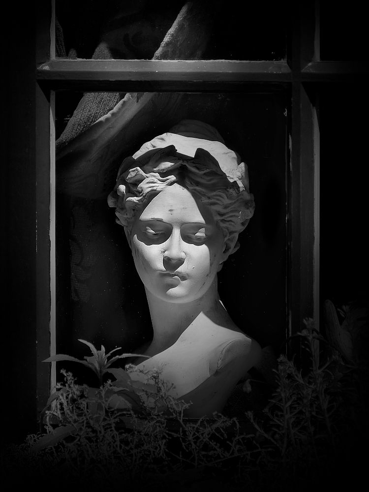 ... one lady in the window
