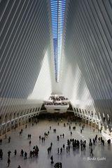 One World Trade Center durch das Dach des Oculus