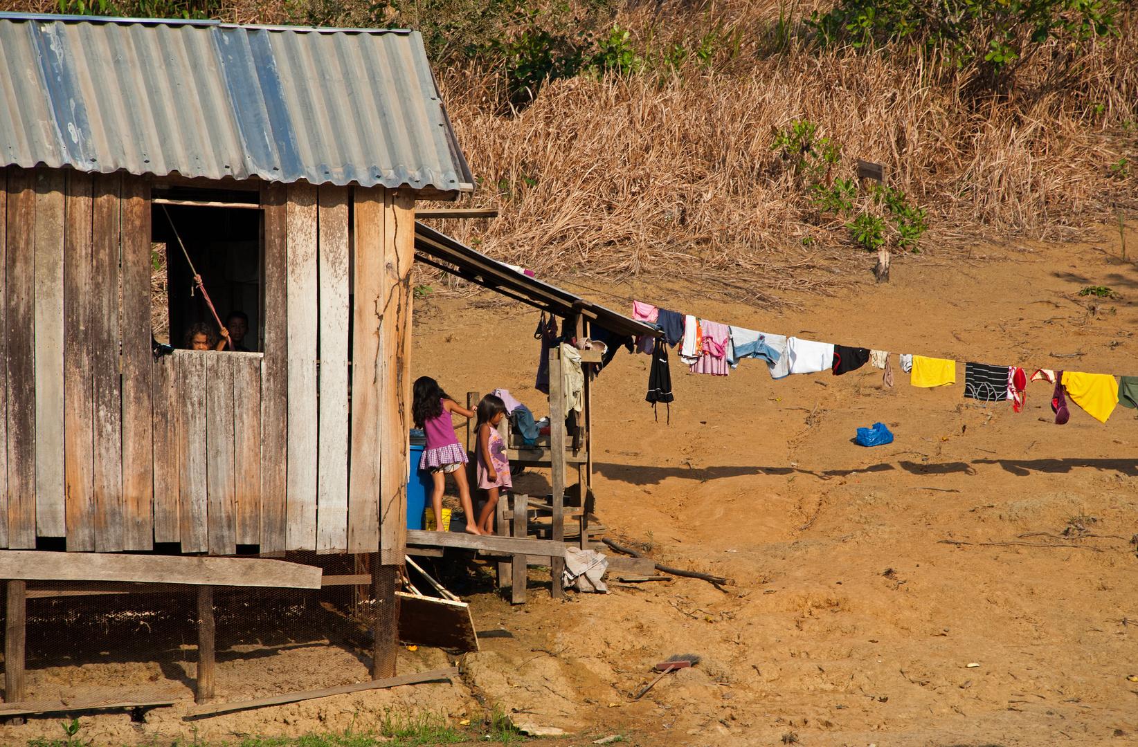 Online in Amazonien