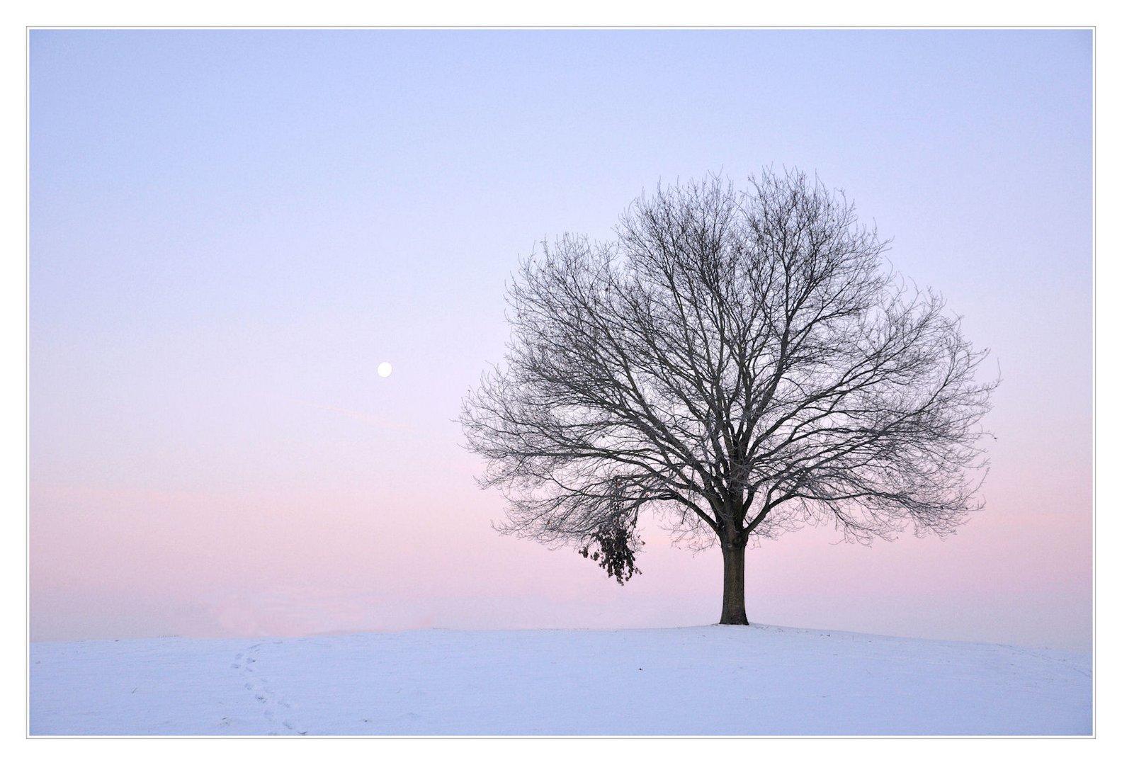 only the moon looks on..... nur der Mond schaut zu.......