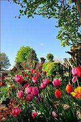 Opas Garten
