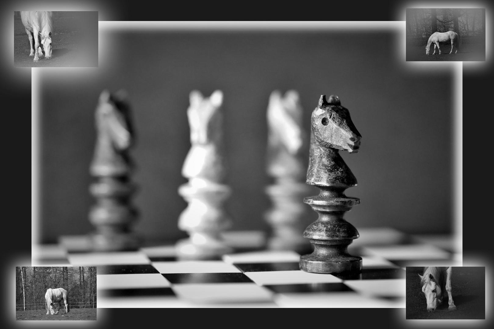 Opas selbst geschnitzte Schachpferde