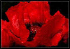 Opiumhöhle