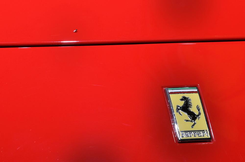 Opps... una mosca sulla Ferrari appena pulita..