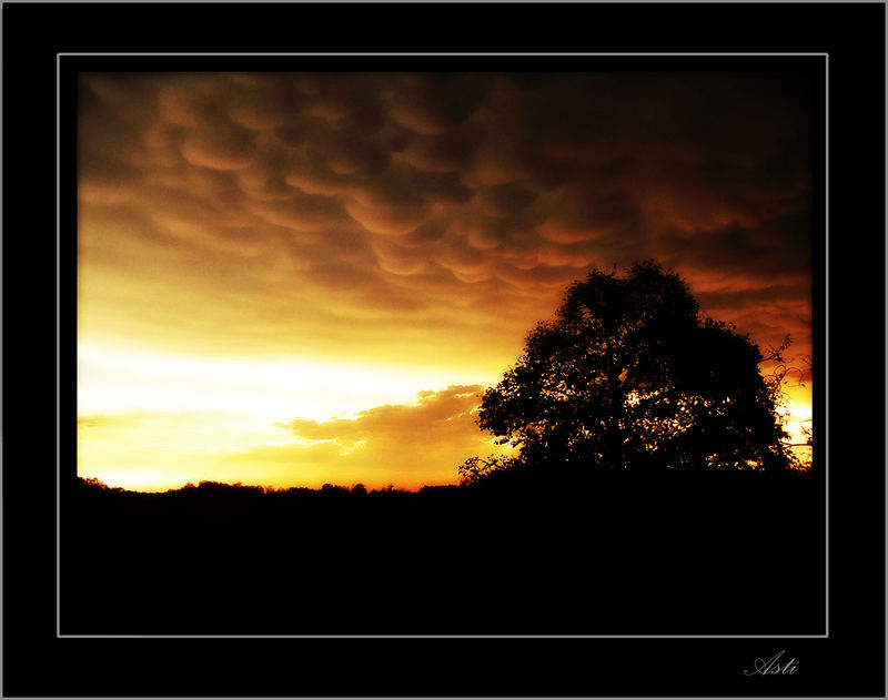 orage de coton