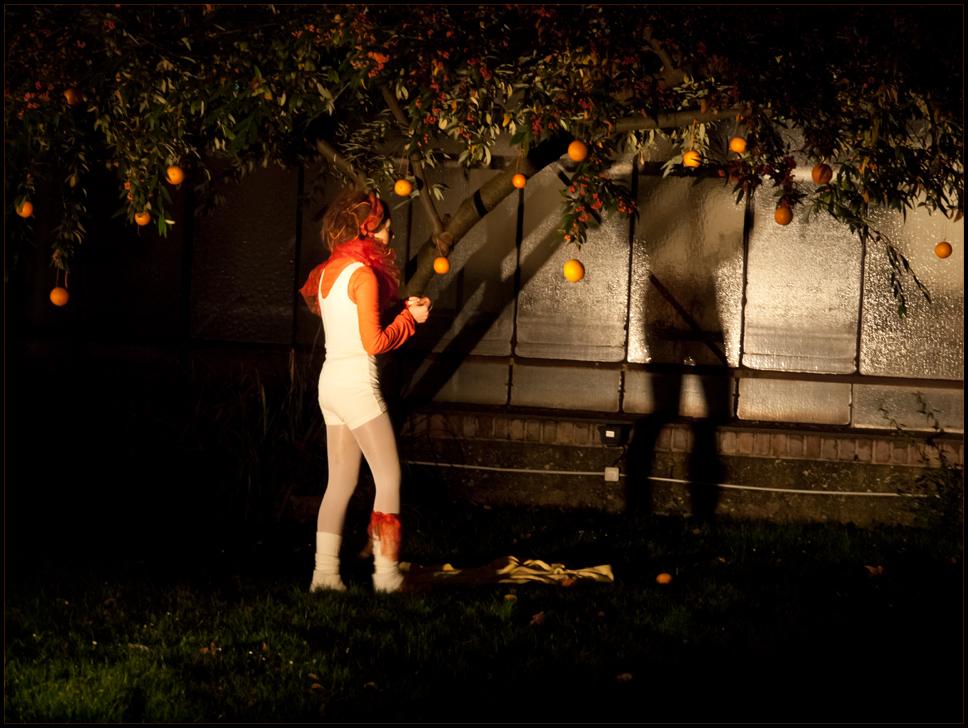 Orangen - Performance