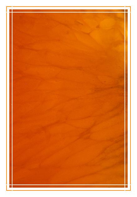 OrangeProject V.1.1