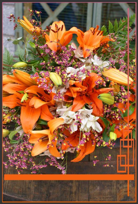 Oranges Blumenfeuerwerk