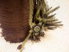 Orbea variegata -2