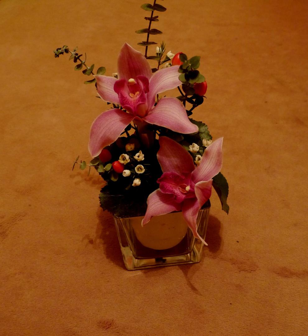 Orchidee 2. Versuch