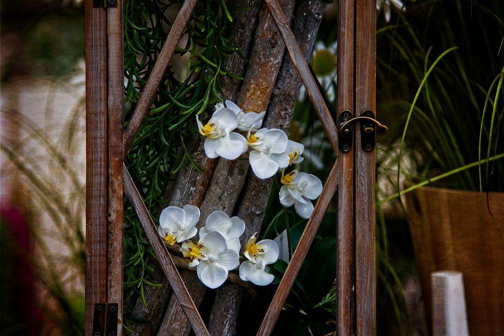 Orchidee im Glaskasten.....