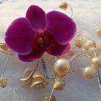 Orchidee im Schnee -1 #