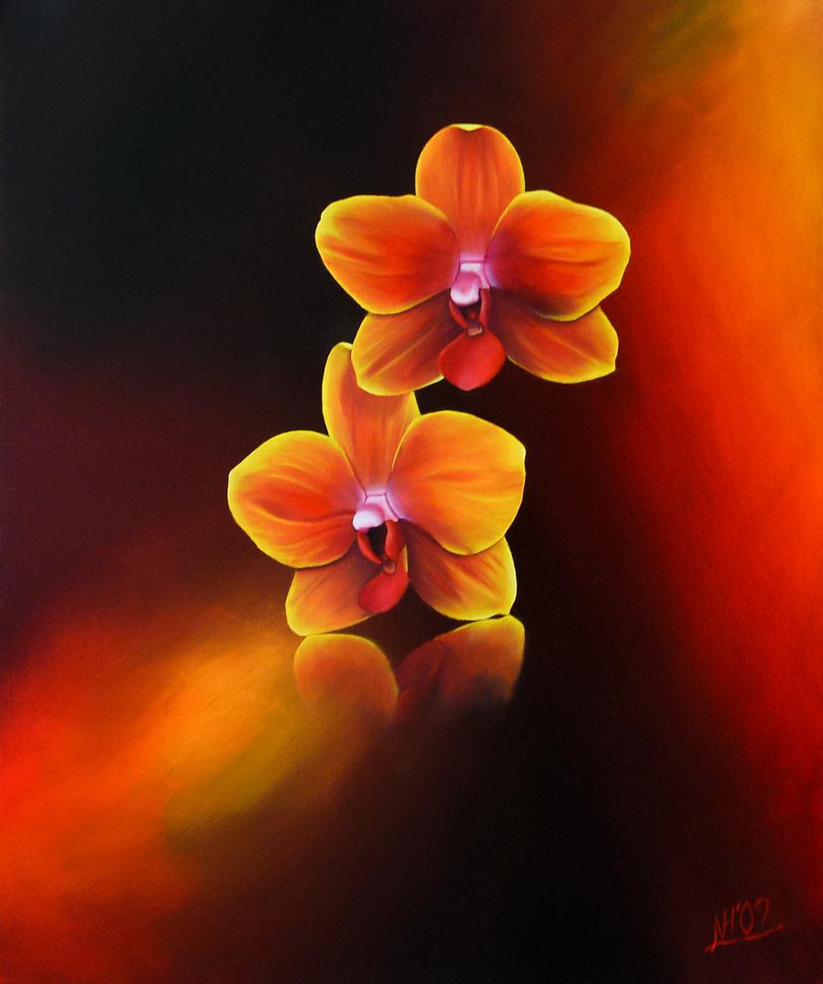 Orchideen in Öl