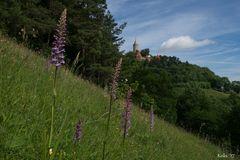 Orchideenland