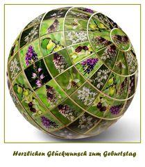 Orchiskugel für Manfred
