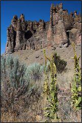 Oregon   earth history  