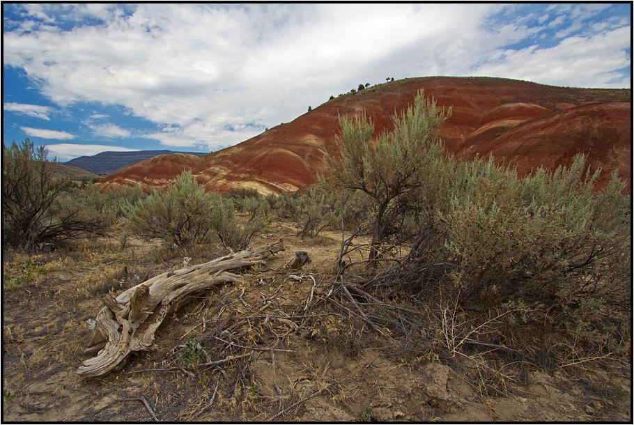 Oregon | painted hills |