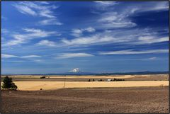 Oregon   wide skies  