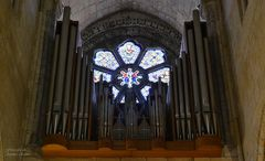 Organs of tubes of the Cathedral of Oporto