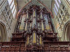 Orgel in der St.-Johannes-Kathedrale