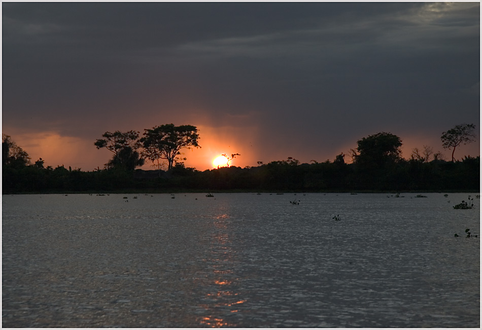 Orinoco - Sonnenuntergang