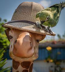 Ornithologe