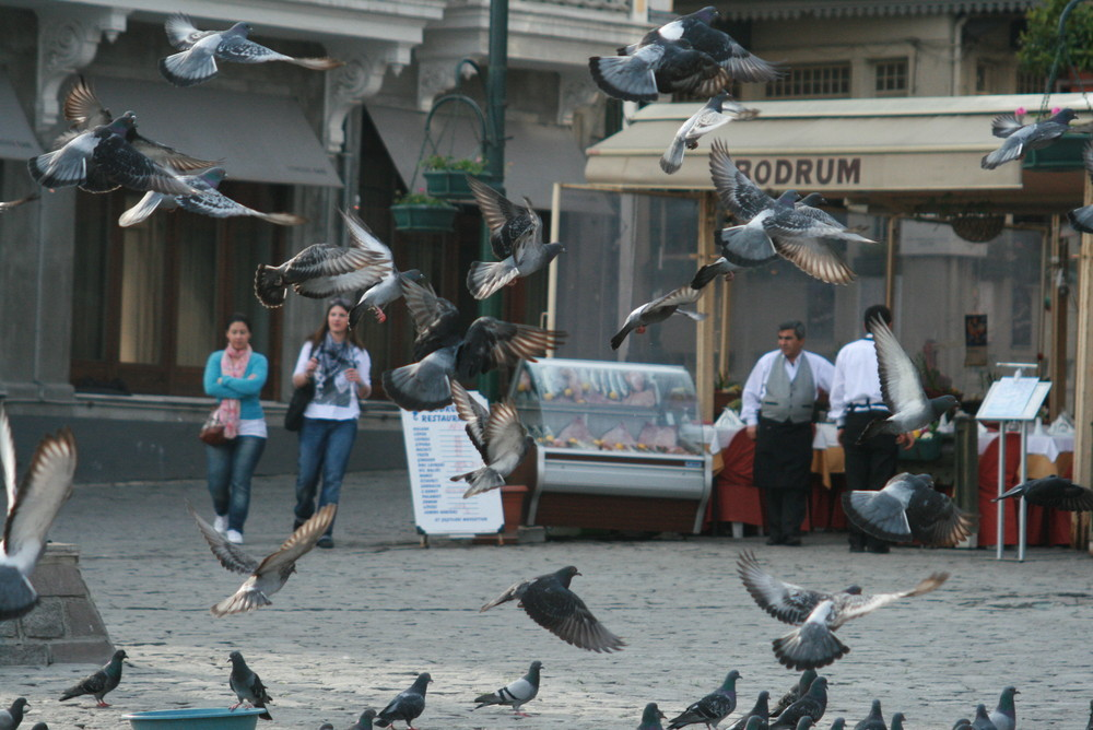 Ortaköy/Istanbul