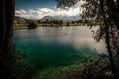 Ortwanger See