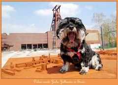 Oskar meets Zollverein