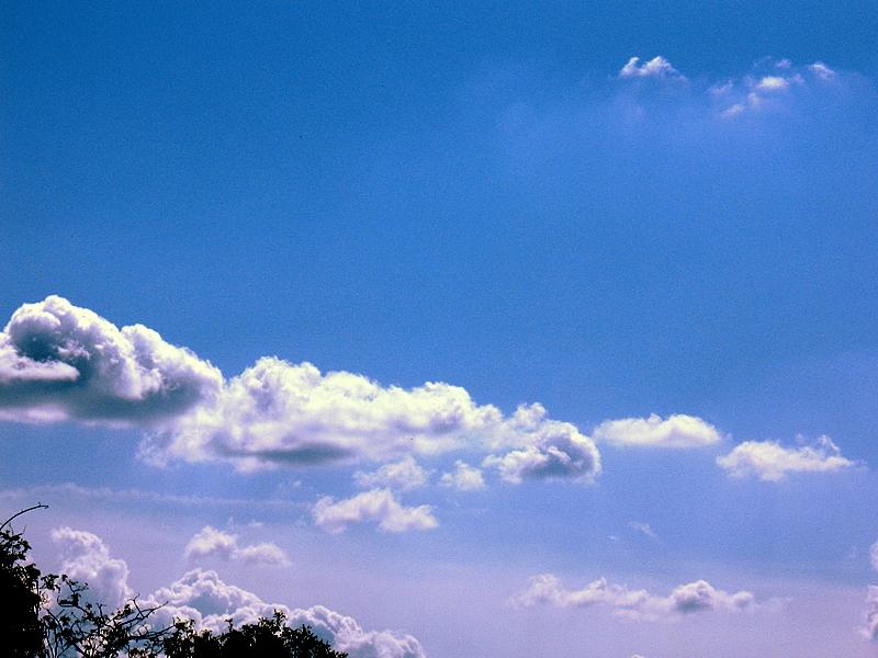 Osservando il cielo .........