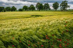Ost-Holsteiner Land