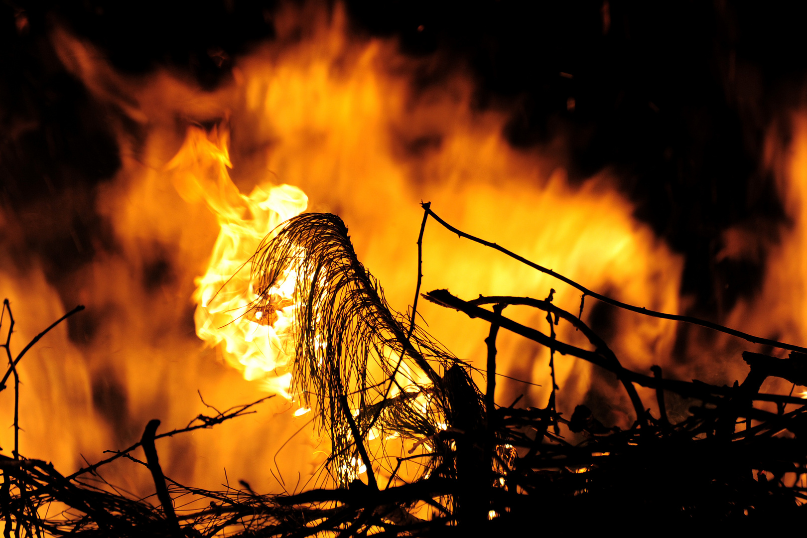 __osterfeuer__