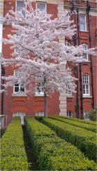 Ostern 2006