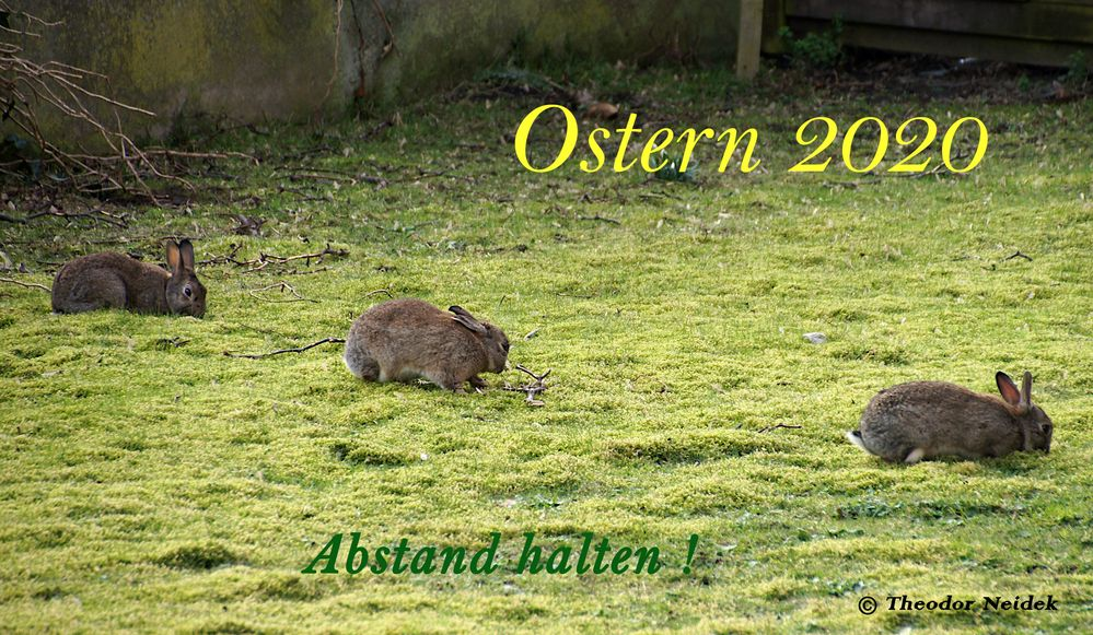 Ostern 2020 anders