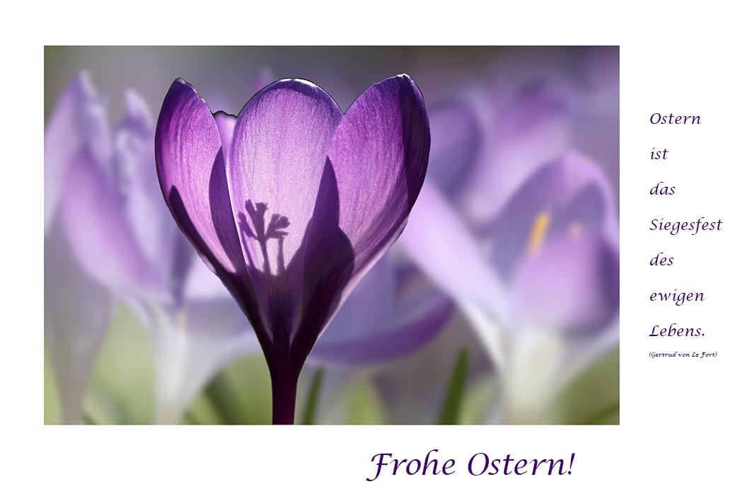 ...Ostern ist die Zeit der Hoffnung...