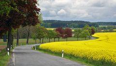Osterzgebirge/Sachsen