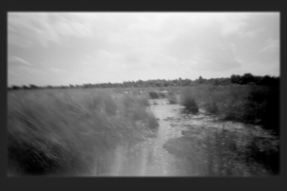 Ostfriesisches Moor