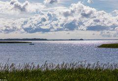 Ostsee in der Morgensonne (1)