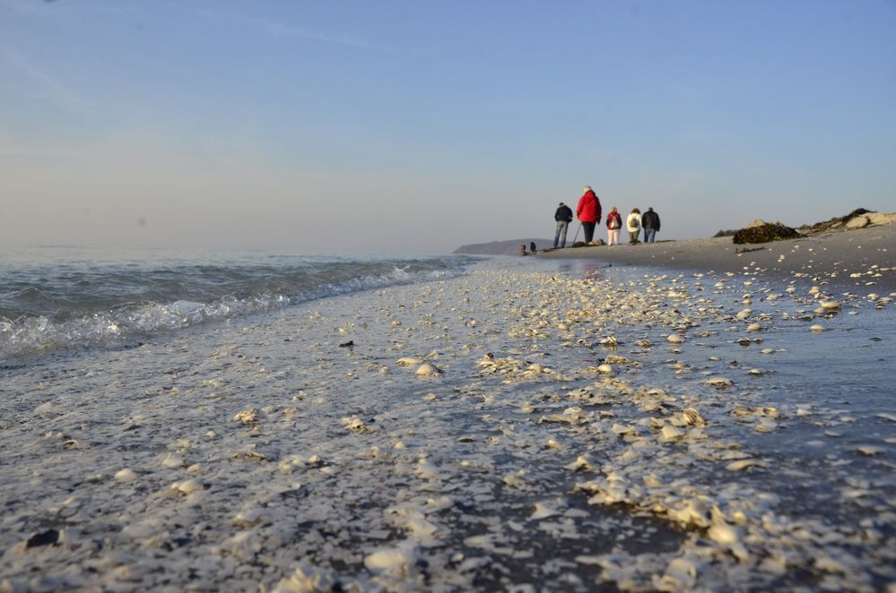 Ostsee Insel Hiddensee