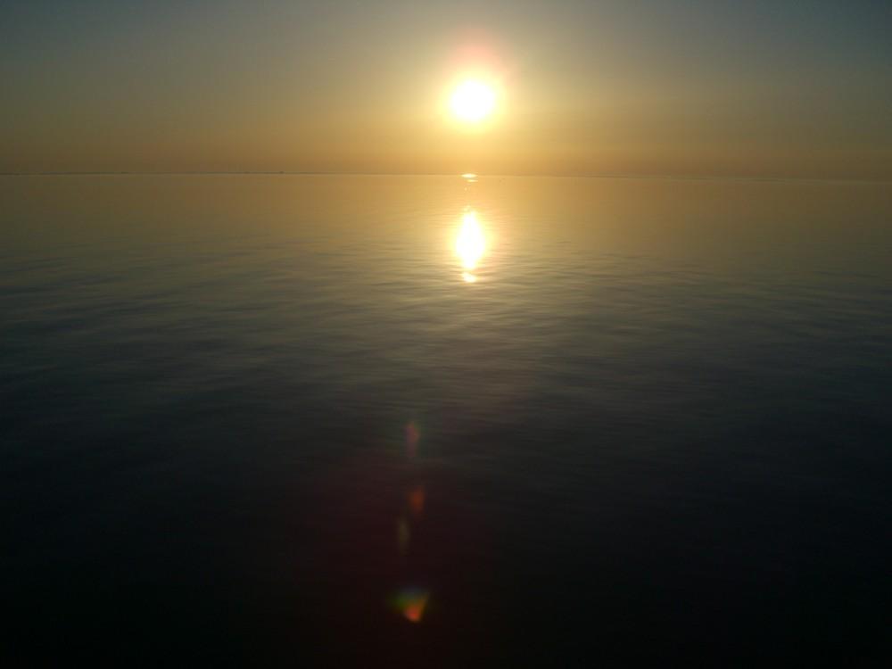 Ostsee Sommer 2008