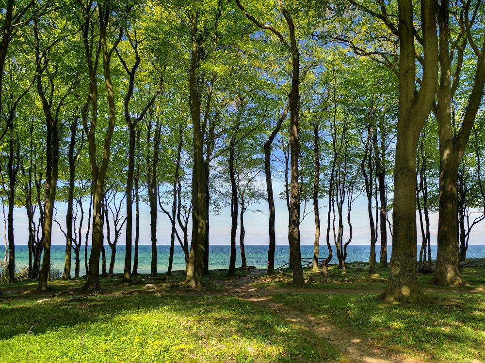Ostsee-Trip