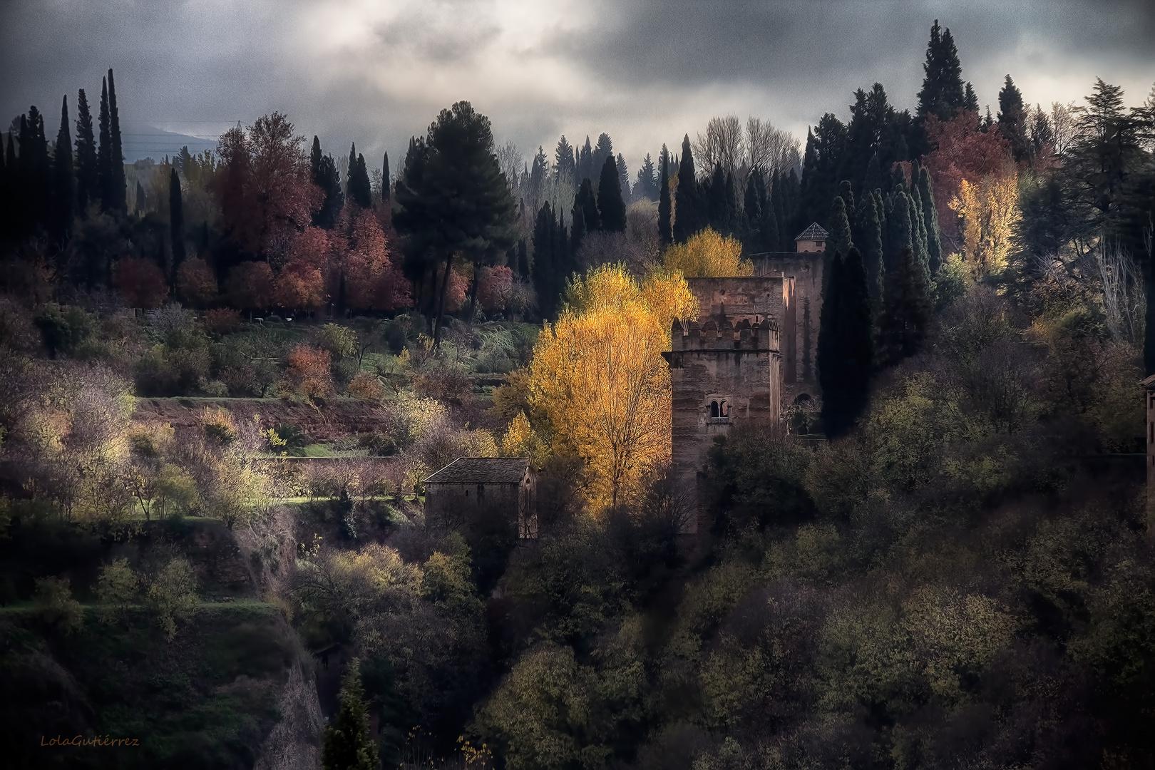 Otoño en el bosque de la Alhambra
