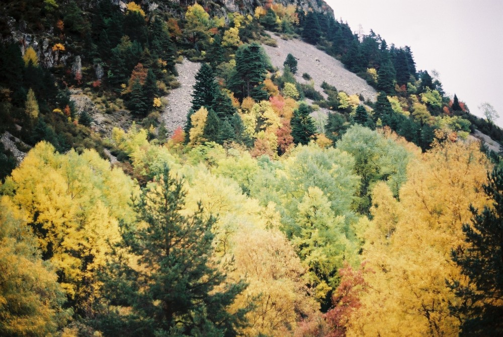 Otoño en el Valle de la Barrosa (Huesca)