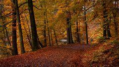 Otoño / Herbst