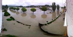 Ottensheimer Hochwasserpanorama